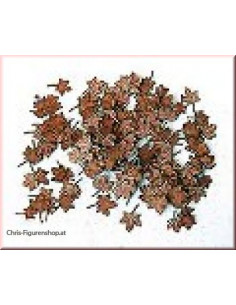 Leaves-maple